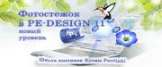 PE-Design 11s.png